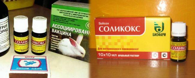 Инструкция по применению Соликокс для кроликов
